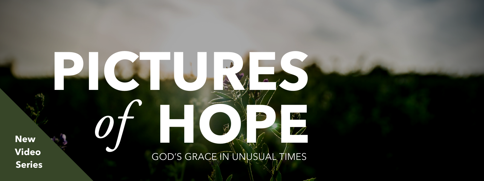 Pictures of Hope Video Series | God's Grace in Unusual Times