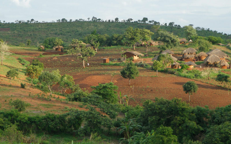 CAPA (Malawi)